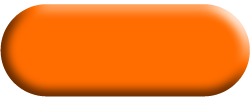 Wandtattoo Zebra Banner in Orange